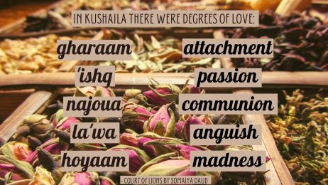 In Kushaila there were degrees of love_